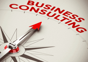 Business Consulting and the Consulting Industry